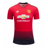 18-19 Manchester United Home Red Jersey Shirt(Player Version) picture and image